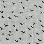 True North 2 - Birds