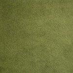 Shannon Fabrics - Cuddle Solid - 90 - Cactus