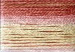8007 Cosmo Seasons Variegated Embroidery Floss Pinks/cream