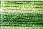 8012 Cosmo Seasons Variegated Embroidery Floss Greens