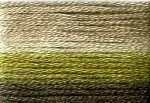 8017 Cosmo Seasons Variegated Embroidery Floss Dark Greens