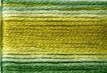 8019 Cosmo Seasons Variegated Embroidery Floss Greens