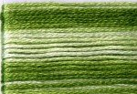 8021 Cosmo Seasons Variegated Embroidery Floss Greens