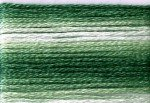 8023 Cosmo Seasons Variegated Embroidery Floss Greens
