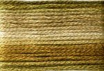 8035 Cosmo Seasons Variegated Embroidery Floss Browns