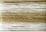 8038 Cosmo Seasons Variegated Embroidery Floss Browns