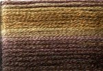 8042 Cosmo Seasons Variegated Embroidery Floss Dark Browns