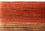 8043 Cosmo Seasons Variegated Embroidery Floss Browns/Rusts