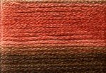 8044 Cosmo Seasons Variegated Embroidery Floss Browns/Rusts