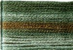 8050 Cosmo Seasons Variegated Embroidery Floss Dark teal/brown