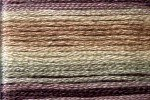8065 Cosmo Seasons Variegated Embroidery Floss purples/cream