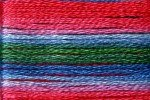 8080 Cosmo Seasons Variegated Embroidery Floss Rose/Green/Blue