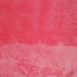 Shannon Fabrics - Cuddle Solid - 60 - Coral