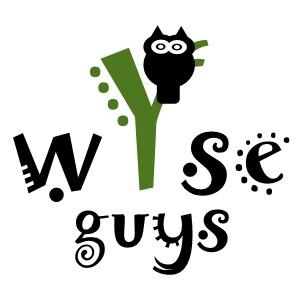 Wyse Guys classes