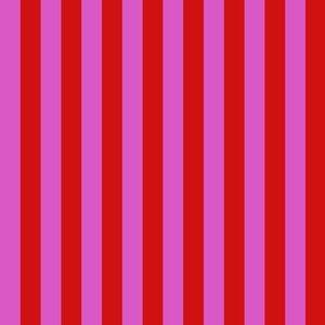 All Stars Tent Stripe Peony PWTP069.PEONY Tula Pink