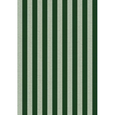 Primavera Cabana Stripe Mint Canvas RP309-MI4C Rifle Paper Company
