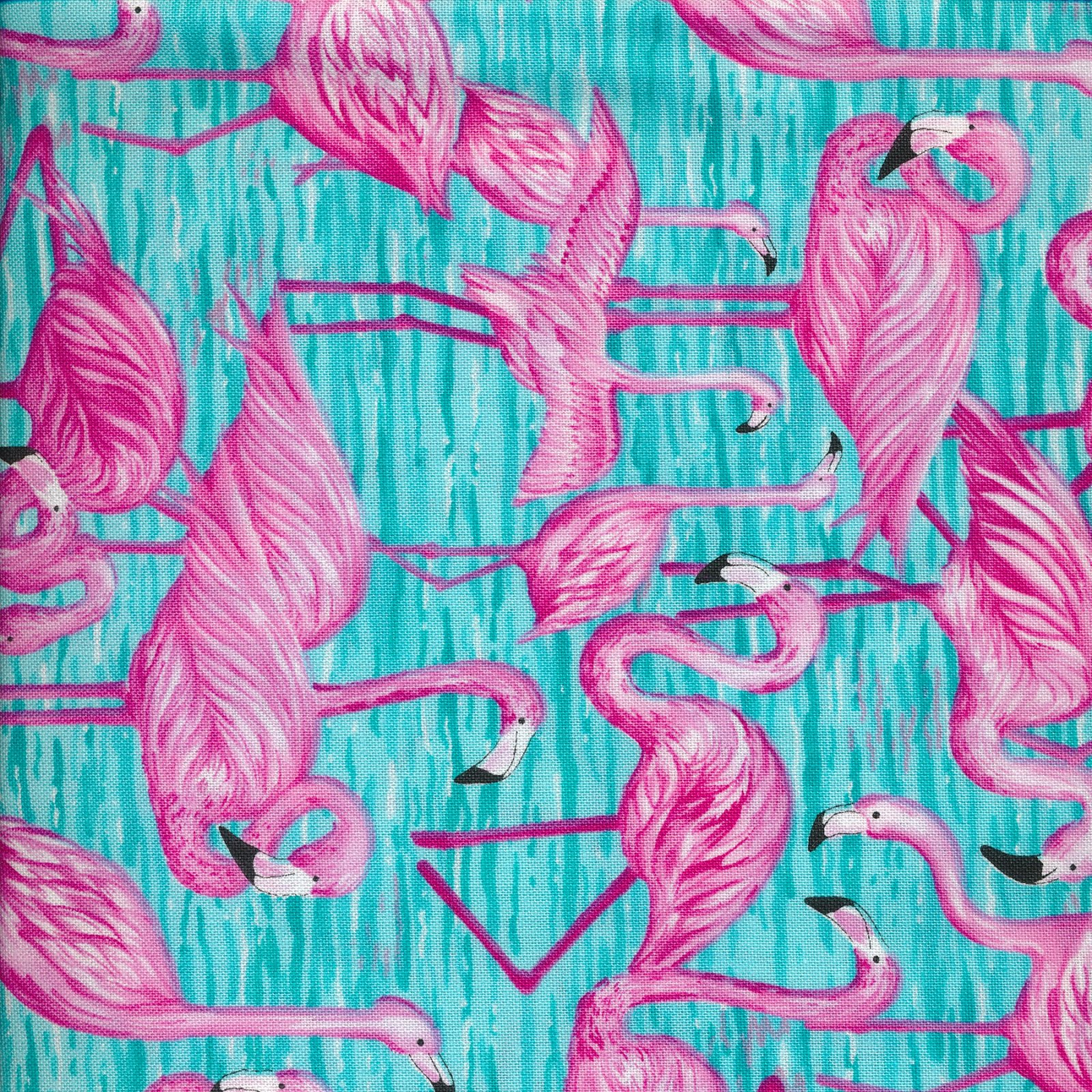 flamingos on blue