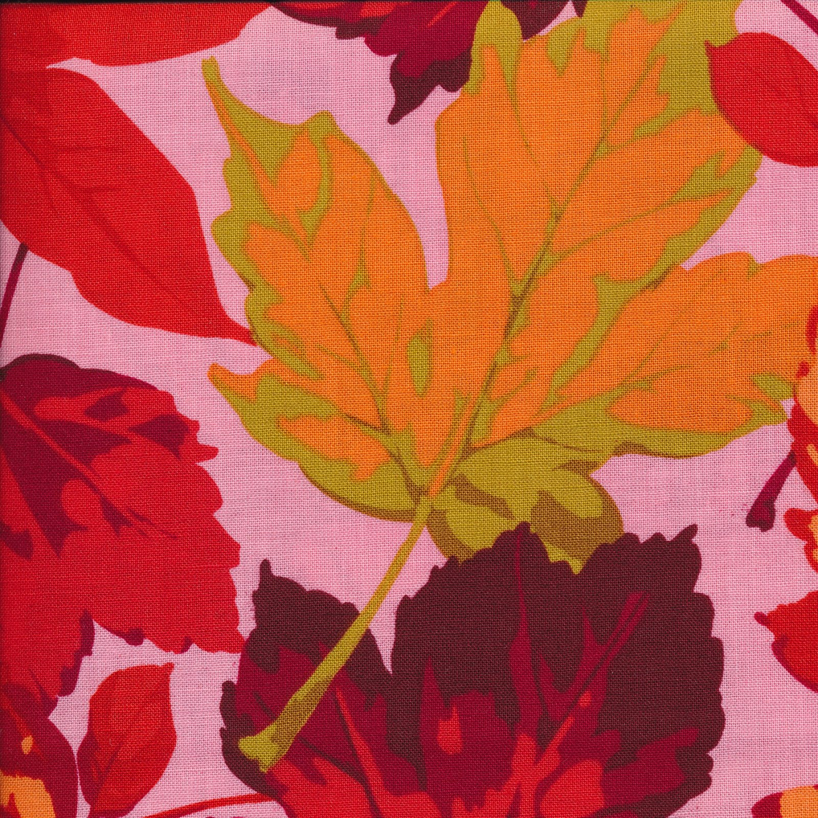 Autumn Medley: Maples in Bright