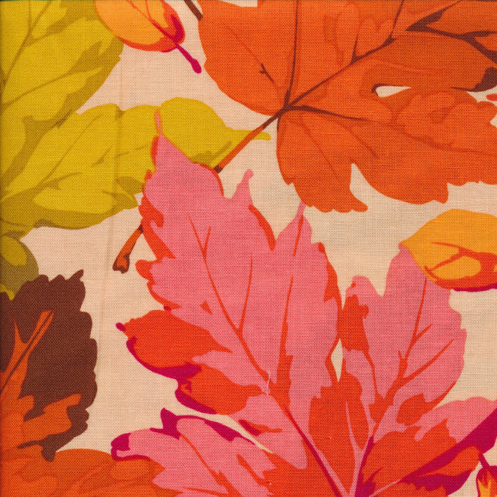 Autumn Medley: Maples in Coral