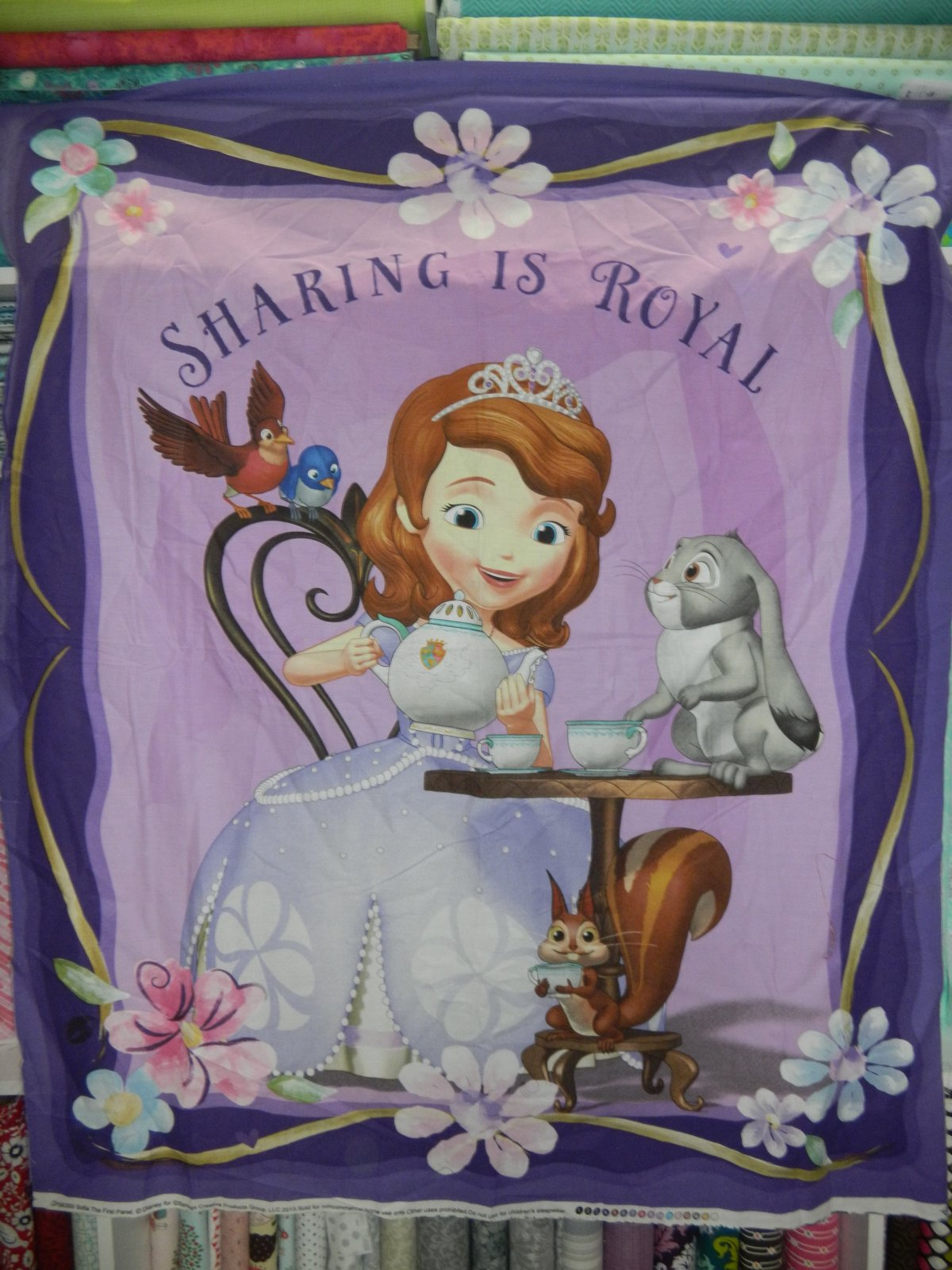 Panel#234 - Sofia the First  - Children/Young Adult