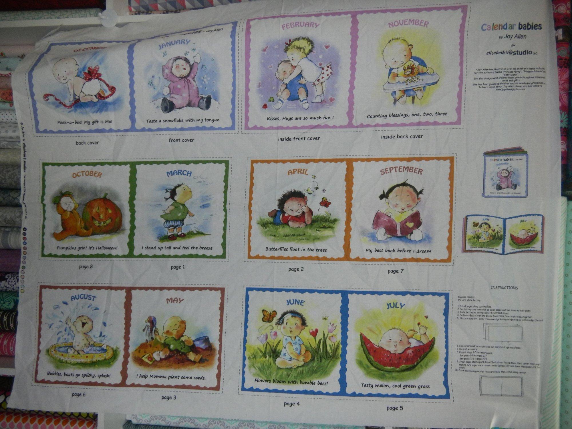 Panel#243 - Calandar babies  - book panel