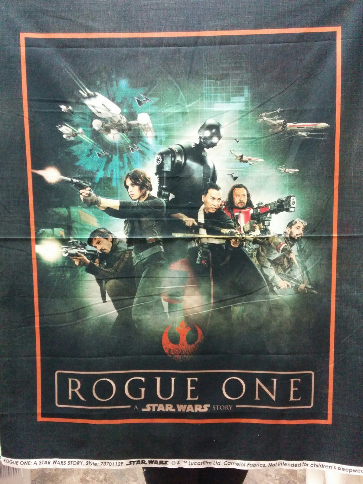 Panel#218a - Star Wars - Rogue One - Young Adult/Travel