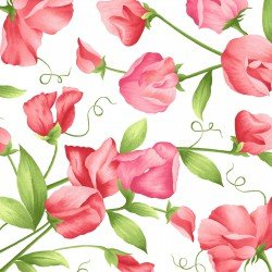 WHITE SWEET PEA FLORAL FLANNEL F8121 W