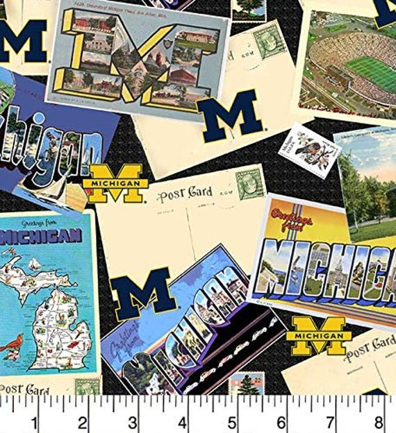 NCAA-Michigan Wolverines Scenic MCHG1211