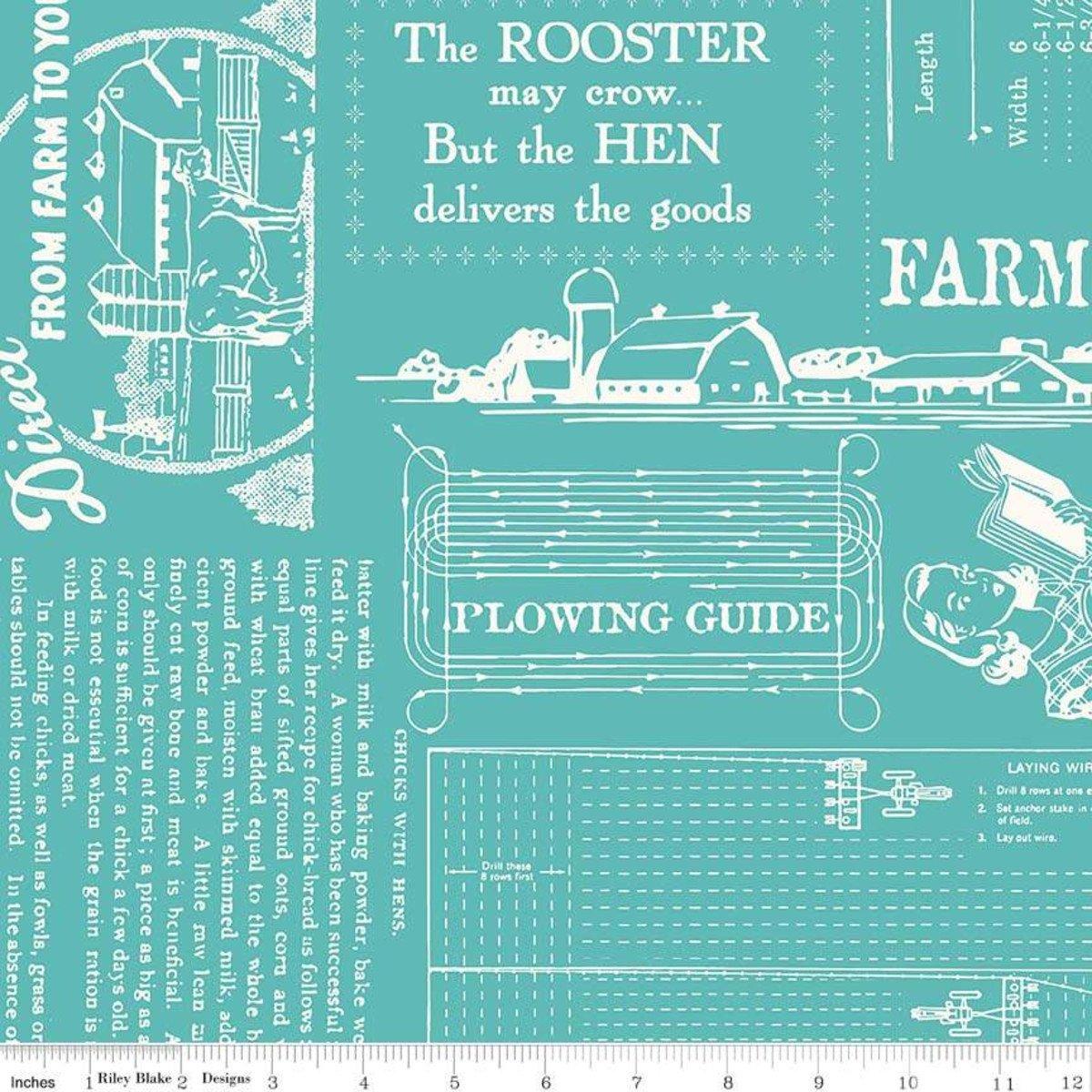 Farm Girl Vintage - Farm Girl Life 108 Wide Back in Cottage for Riley Blake Designs