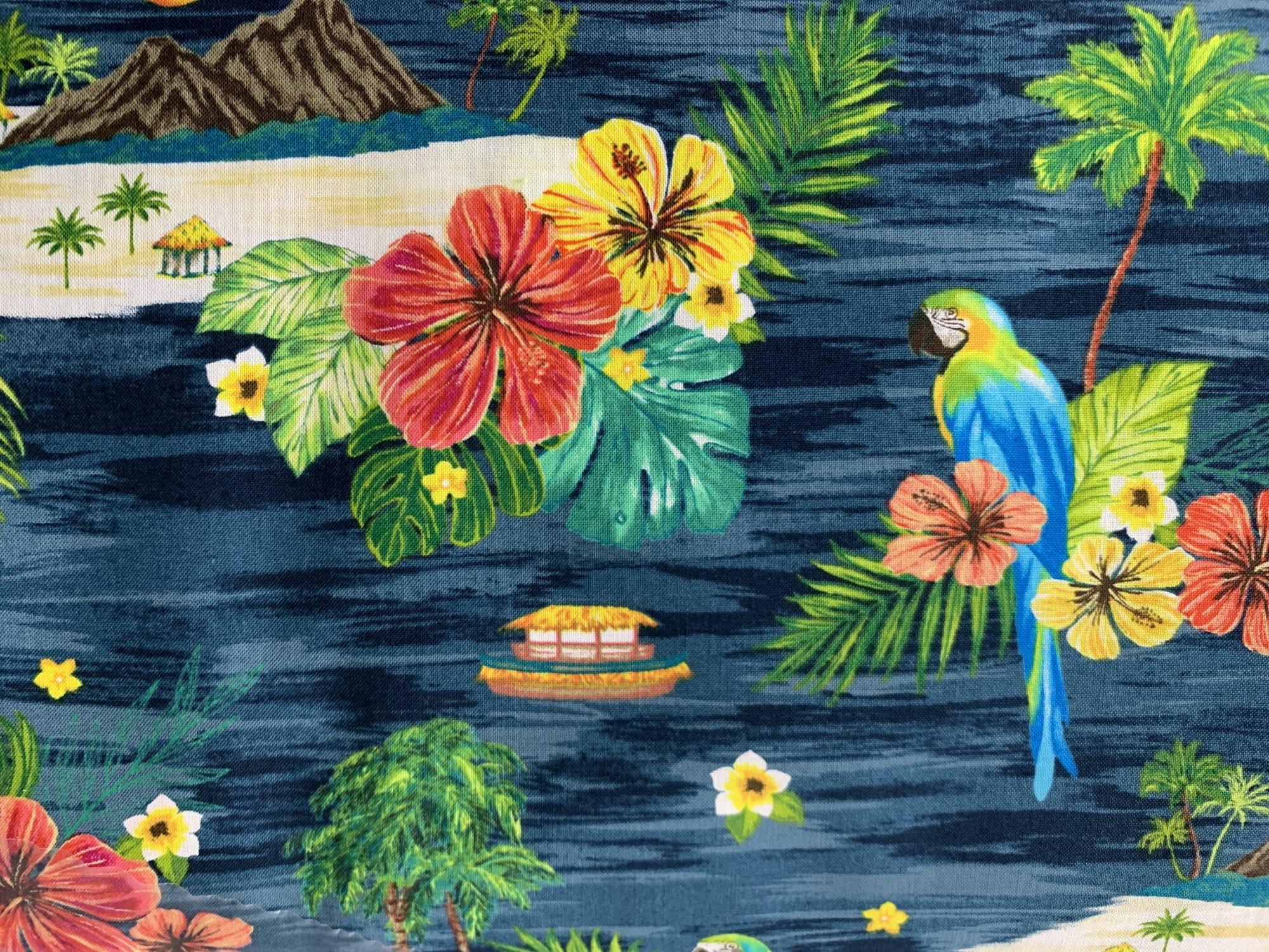 Ocean Island Scene 51779-2