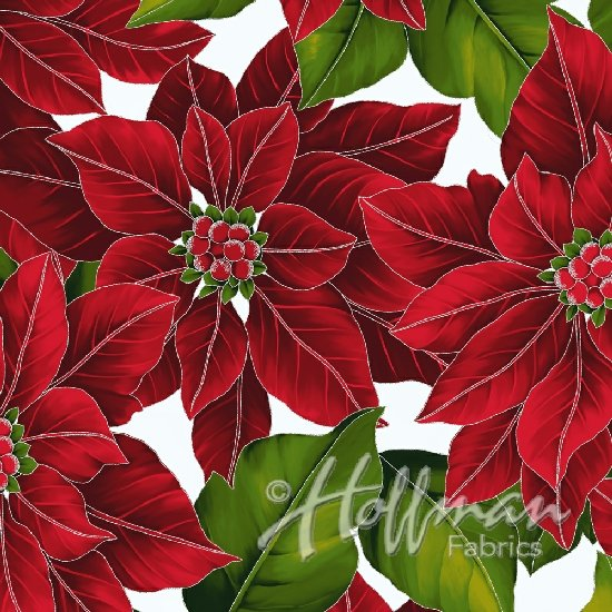 Poinsettia Song Bloom Frost/Silver Christmas