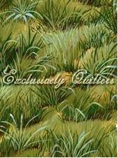 Moose Lake - meadow of grass