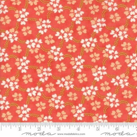 white flowers on peach background
