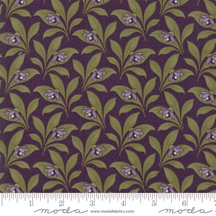 Sweet Violet - blossom in leaves on violet