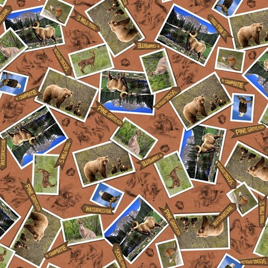 Our National Parks - animal photos on terra cotta background