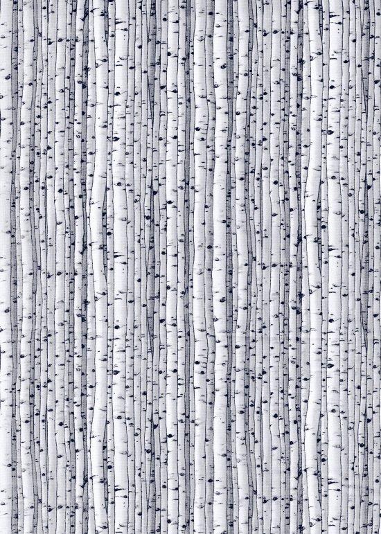 Knock on Wood - birch trees