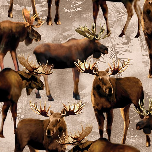 Into The Woods - moose - brownish tint