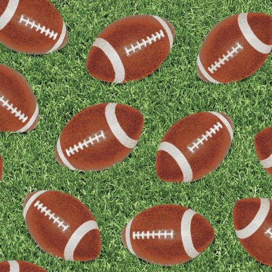 Touch Down - scattered footballs on grass