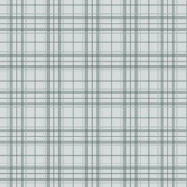 Home Grown Plaid Gray
