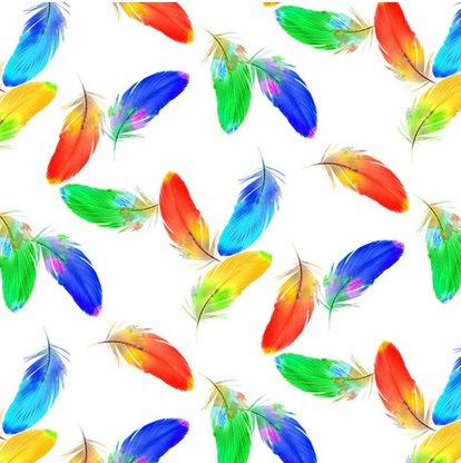Birds in Paradise - colorful feathers on white