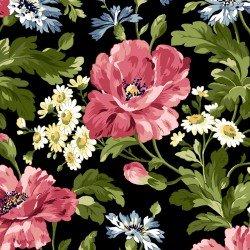 Poppies - poppies on black
