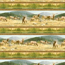 Breaking Light - repeating stripe - elk