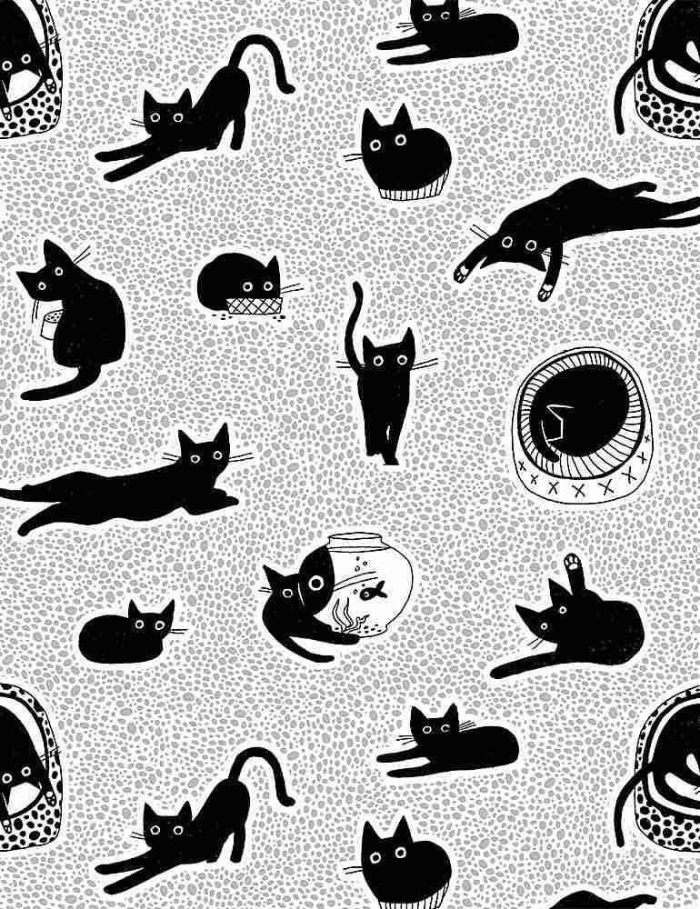 Chillin' Black Cats White