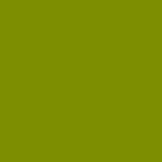 Century Solids - Guacamole