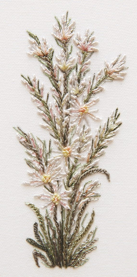 GingerBrazilian hand embroidery