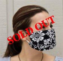 Face Mask kit for 1