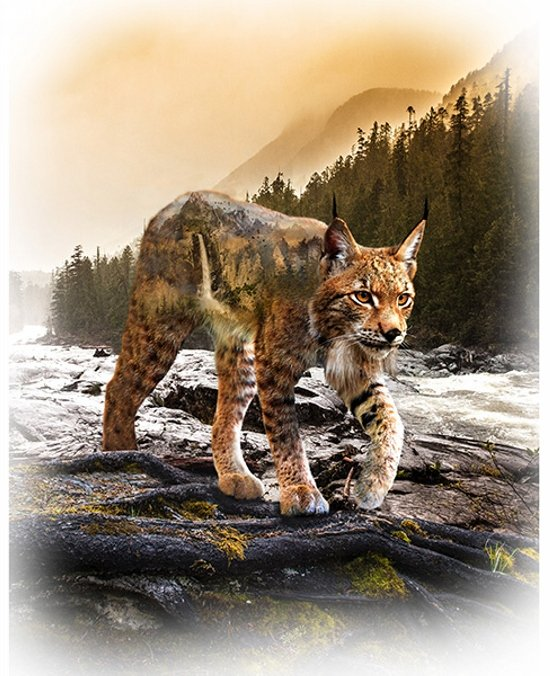 Call of the Wild Bob Cat