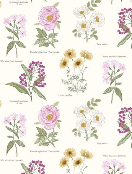 Botanic Flowers on Cream