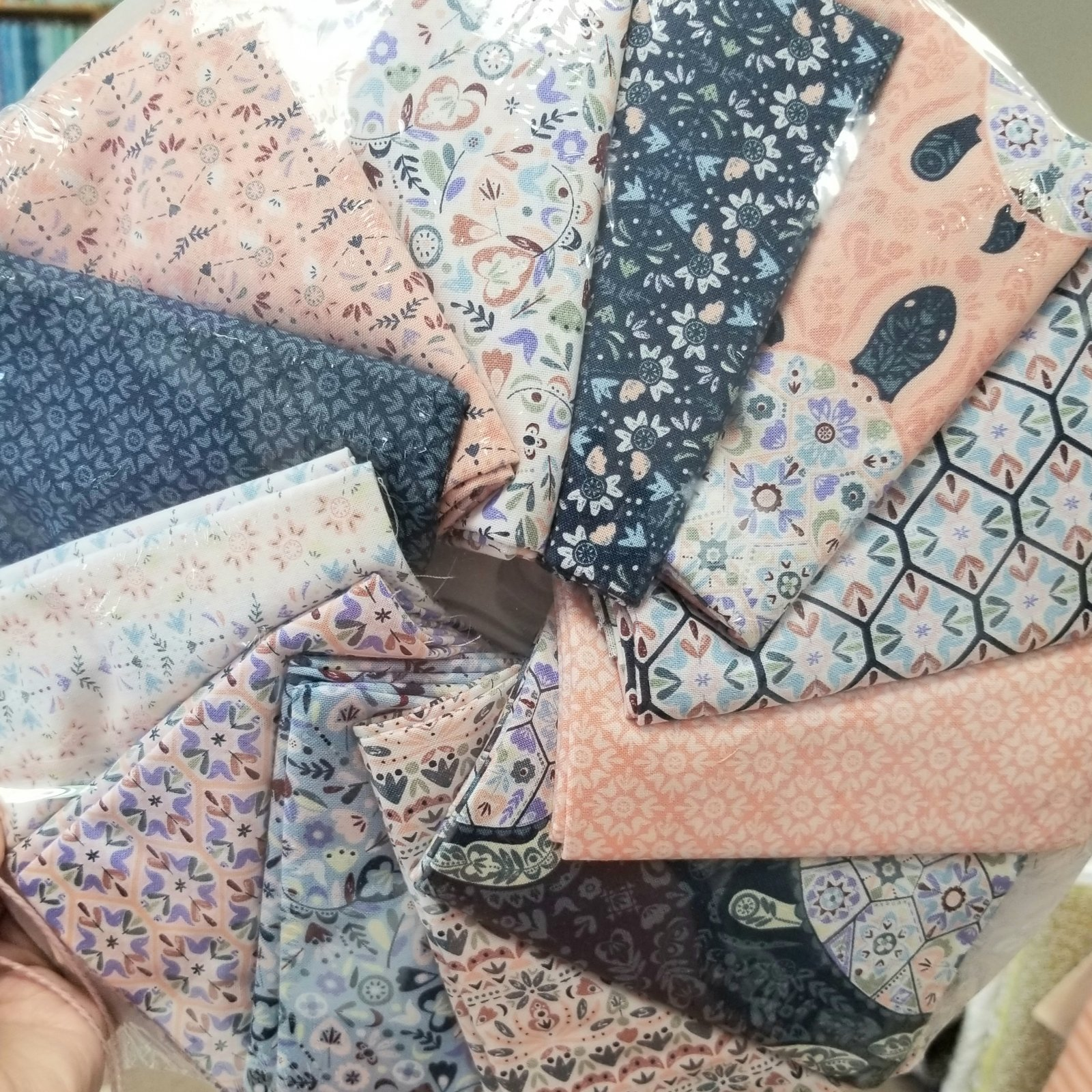 Turtle Cove by Camelot Fabrics (Collection and Panel)