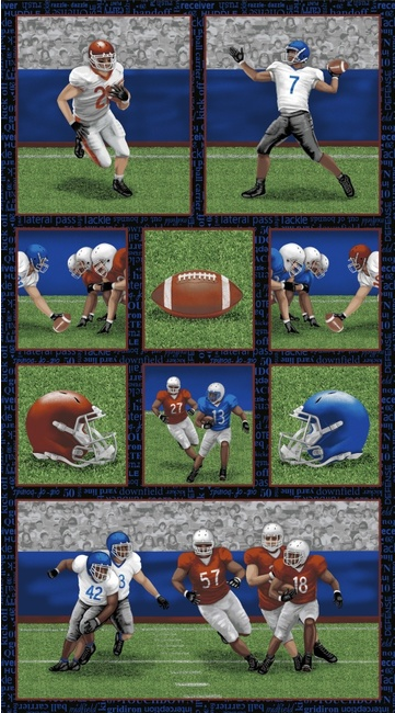 Touch Down Football Scenes Panel by Blank Quilting